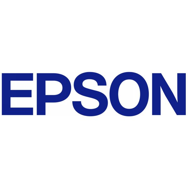 Μελάνι Epson T6039 Light light Black