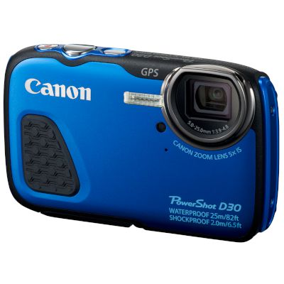 Canon Digital Camera D30