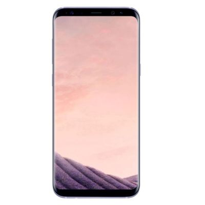 Samsung Galaxy S8+ 4G+ Smartphone Orchid Gray